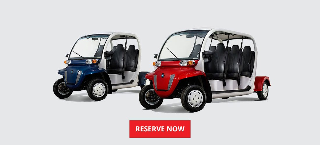 Ride in style with Ami Beach Buggys